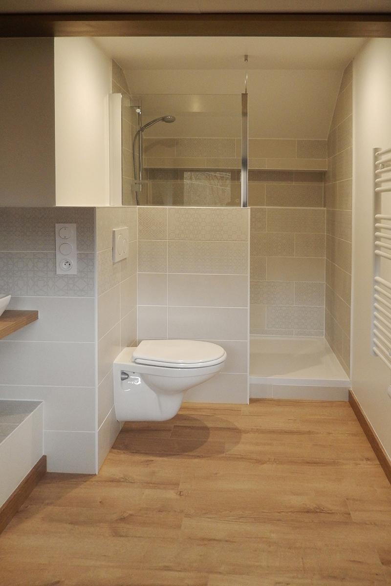 Salle de bain, wc et douche en fond